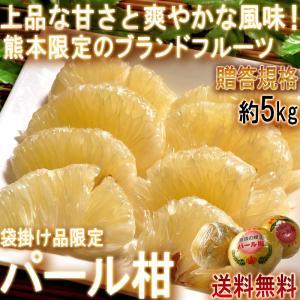 ◆熊本県が誇るブランド柑橘!さわやかな風味と甘さの「パール柑」  パール柑は文旦の血を引く熊本県のブ...
