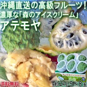 産地直送 アテモヤ 沖縄県産 約2kg 5〜8玉前後 南国フルーツ JAおきなわ 沖縄果実連 濃厚な味わいのトロピカルフルーツ