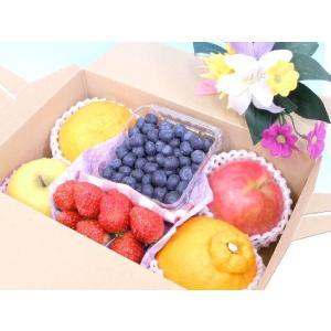 フルーツギフト 果物詰め合わせ 4〜6種入り 贈答品 化粧箱入り 季節で変わるフルーツセット 当店自慢の旬の果物をお届け!