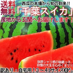 大玉スイカ 約8kg 1玉入り 千葉県産 訳あり品 家庭用 ...