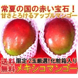 アップルマンゴー メキシコ産・ブラジル産 2玉 化粧箱入り ...