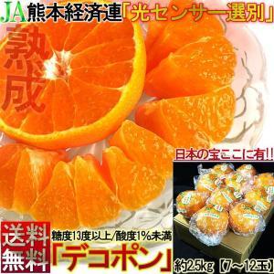 本貯蔵デコポン しらぬい 約2.5kg 7〜12玉 熊本県産...