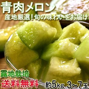 ※予約 青肉メロン 約5kg 熊本県産中心 アンデスメロン・...