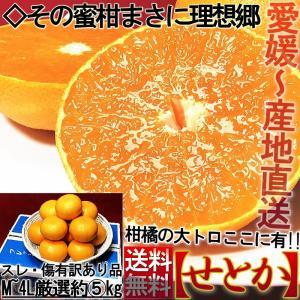 産地直送 せとか 愛媛県産 約5kg M〜4Lサイズ 訳あり...