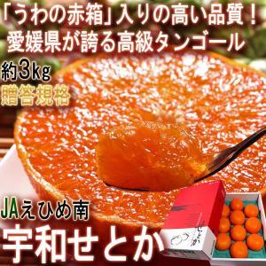 ◆高品質の証!JAえひめ南「うわの赤箱」  愛媛県はせとかや甘平、紅まどんな等の高級柑橘や、伊予柑・...