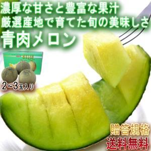 メロン アンデス 青肉 秀品判定 熊本 茨城 北海道等厳選 ...