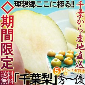 千葉梨 豊水・秋月 約5kg 9玉〜14玉前後 秀品〜優品 ...