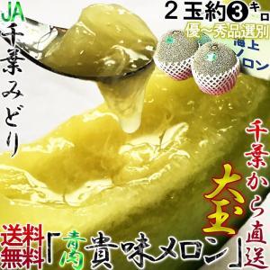 貴味メロン 青肉 約3kg 2玉入り 大玉限定 千葉県産 秀...