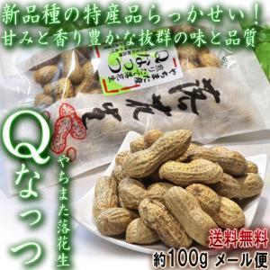 Qなっつ やちまた落花生 100g×2袋 千葉県・八街市産 見た目と味わい共に優れた新品種らっかせい...