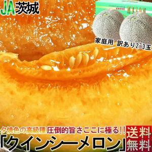 クインシーメロン 2玉 赤肉 メロン 化粧箱入り 茨城産・熊...