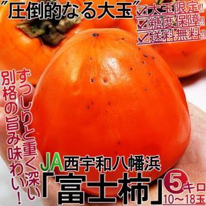 富士柿 ふじがき 約5kg 大玉限定 愛媛県産 秀から特選 特大の果実にまろやかな甘さ!お得な価格の...