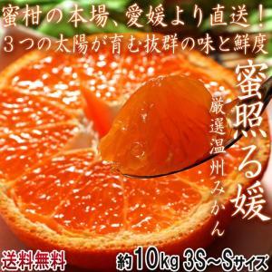 産地直送 みかん 愛媛 約10kg 宇和の太陽 小玉限定 S〜3Sサイズ 柑橘 温州ミカン :蜜柑 3つの太陽 とりたて完熟蜜柑