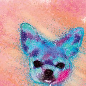 【H2O color -version3-】 チワワ 10by10 STYLE (インテリア/雑貨/犬/グッズ)|wan-nyan-gallery
