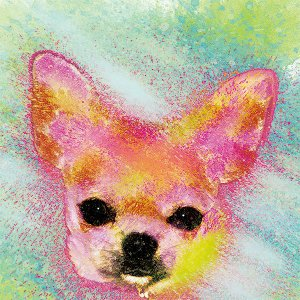【H2O color -version1-】 チワワ 10by10 STYLE (インテリア/雑貨/犬/グッズ)|wan-nyan-gallery