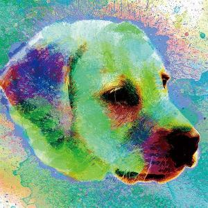 【H2O color -version1-】 ラブラドールレトリバー 10by10 STYLE (インテリア/雑貨/犬/グッズ)|wan-nyan-gallery