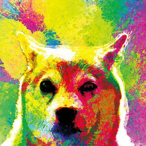 【H2O color -version1-】 柴犬 10by10 STYLE (インテリア/雑貨/犬/グッズ)|wan-nyan-gallery