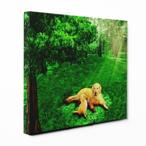 【木漏れ陽】 ゴールデンレトリバー Sサイズ ワンにゃんアートキャンバス Forest series (絵画/アートパネル/犬)|wan-nyan-gallery