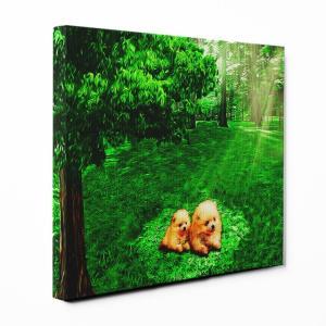 【木漏れ陽】 ポメラニアン Sサイズ ワンにゃんアートキャンバス Forest series (絵画/アートパネル/犬)|wan-nyan-gallery