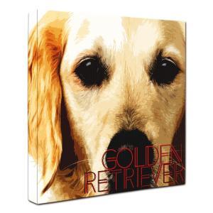 【IMPACT -color-】 ゴールデンレトリバー Lサイズ ワンにゃんアートキャンバス (絵画/犬/インテリア雑貨/グッズ)|wan-nyan-gallery