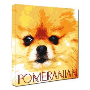 【IMPACT -color-】 ポメラニアン Mサイズ ワンにゃんアートキャンバス (絵画/犬/インテリア雑貨/グッズ)|wan-nyan-gallery