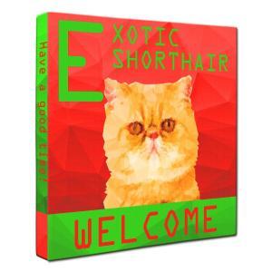 【WELCOME】 エキゾチックショートヘア Sサイズ ワンにゃんアートキャンバス Polygon series (絵画/猫/インテリア雑貨/グッズ) wan-nyan-gallery