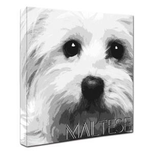 【IMPACT -shirokuro-】 マルチーズ Lサイズ ワンにゃんアートキャンバス (絵画/犬/インテリア雑貨/グッズ)|wan-nyan-gallery