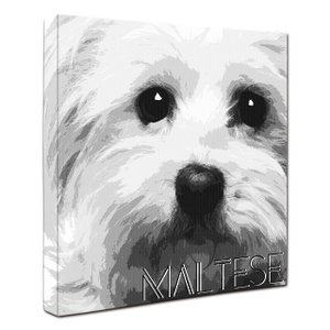 【IMPACT -shirokuro-】 マルチーズ Mサイズ ワンにゃんアートキャンバス (絵画/犬/インテリア雑貨/グッズ)|wan-nyan-gallery