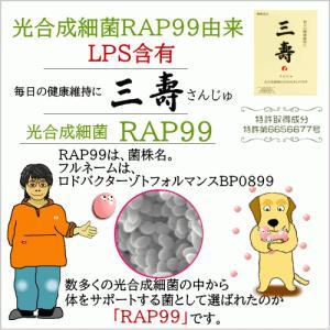 三壽 60粒入り 三寿 微生物酵素サプリメント 営業日午後4時迄当日発送|wan-nyan-olive|07