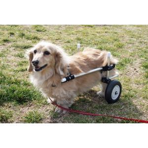 わんワーク 犬用2輪歩行器・車椅子 小型犬用 〜8.5kg以下