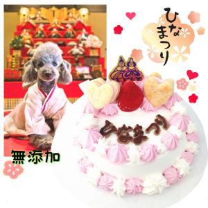犬猫用のひなまつりケーキ 無添加 馬肉生地 10cm3号サイズ ヘルシーで低カロリー ひな祭り 桃の...