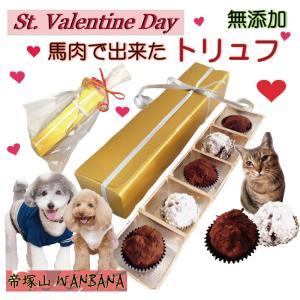 犬 猫用 バレンタインデー ギフト チョコレート風 トリュフ 無添加 おやつ 馬肉 団子 プレゼント...