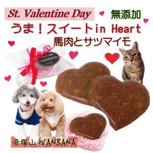 犬用 猫用 バレンタインデー うま!スイートinハート ギフト 馬肉  チョコレート風 スイーツ  ...