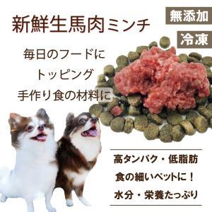 犬 猫 生肉  馬肉 ミンチ 1kg サイズ 小分け カナダ産 ごはん トッピング 帝塚山 ワンバナ