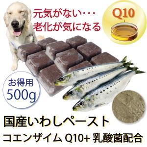 犬 まるごと煮 国産イワシペースト コエンザイムQ10入り 手作りドッグフード ごはんの材料 サプリメント・小分けトレー お得用500g