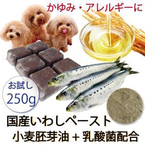 犬 まるごと煮 国産イワシペースト 小麦胚芽油入り 手作りドッグフード ごはんの材料 サプリメント・小分けトレー 250g