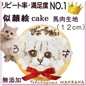 猫用 ねこ 似顔絵 ケーキ 一頭 描き 馬肉 寒天 生地 4号 サイズ 誕生日 無添加 オリジナル ...