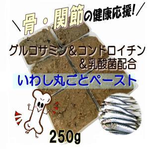 犬 まるごと煮 国産イワシペースト グルコサミン&コンドロイチン&乳酸菌入り 手作りドッグフード ごはんの材料 サプリメント・小分けトレー 250g