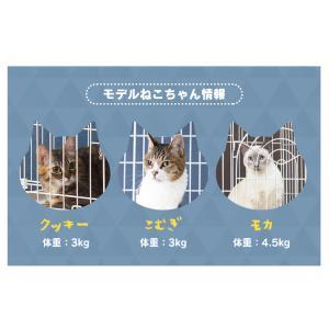 タイムセール/ ケージ 猫 ゲージ キャットケージ キャットケージ 2段 猫ケージ ペットケージ PEC-902 ホワイト アイリスオーヤマ オシャレ おしゃれ あすつく|wannyan|10