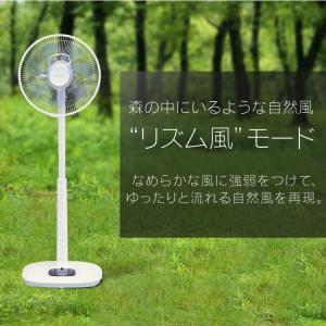 扇風機 リモコン式リビング扇 DCモーター式 ハイタイプ ホワイト LFD-306H アイリスオーヤマ リモコン シンプル 簡単操作 タイマー|wannyan|06