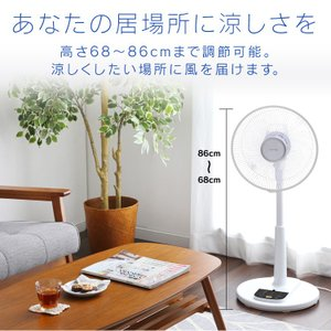 扇風機 リモコン式リビング扇 ホワイト LFA-306 アイリスオーヤマ ペット 犬 猫 あすつく|wannyan|11