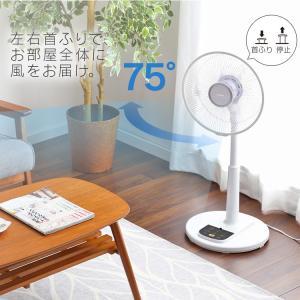 扇風機 リモコン式リビング扇 ホワイト LFA-306 アイリスオーヤマ ペット 犬 猫 あすつく|wannyan|12