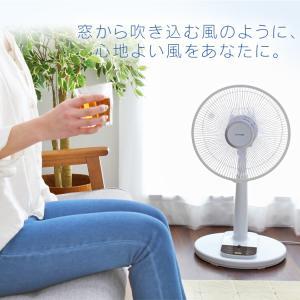 扇風機 リモコン式リビング扇 ホワイト LFA-306 アイリスオーヤマ ペット 犬 猫 あすつく|wannyan|03
