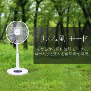 扇風機 リモコン式リビング扇 ホワイト LFA-306 アイリスオーヤマ ペット 犬 猫 あすつく|wannyan|06