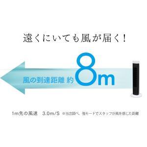 扇風機 タワー型 スリム おしゃれ タワーファン メカ式 ホワイト TWF-M73 アイリスオーヤマ wannyan 10
