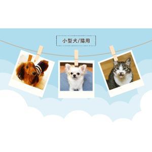 在庫処分特価/ ペットベッド 犬 猫 ペット ベッド ラウンド 夏 夏用 クール 洗える ペット用クールソファベッド 丸型 ベージュ PCSB-18CM アイリスオーヤマ wannyan 07