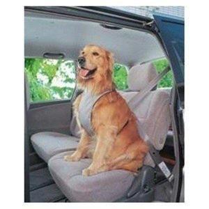 ワンちゃんがじゃれて運転の邪魔をすることを防ぐハーネスです。 急ブレーキで窓ガラスに衝突して怪我をす...