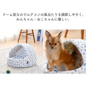 ペットベッド ペット ベッド 犬用ベッド 猫用ベッド 春夏 ペット用クールドームベッド PCDB19M ホワイト/ブルー アイリスオーヤマ あすつく|wannyan|05
