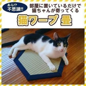 セール/ 猫転換装置 日本製 猫ワープ 猫が寄ってくる 畳 タタミ ホイホイ 猫ほいほい ねこホイホイ|wannyan