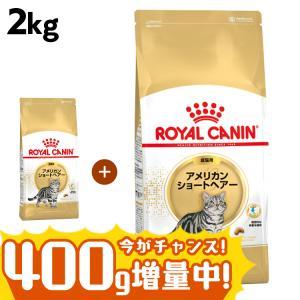 ロイヤルカナン 猫 アメリカンショートヘアー 成猫用 2kg 正規品 キャットフード wannyan