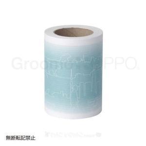 (在庫処分特価)OPPO Groomo スペアテープ 2本入 CL-669-310-0 (B)(テラモト 粘着 ローラー 取り換え用 抜け毛 おしゃれ)|wannyan